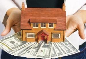 Orewa real estate lawyer